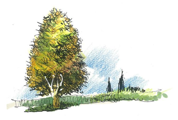 新青年與手繪表達4 | 風景園林新青年 youthla