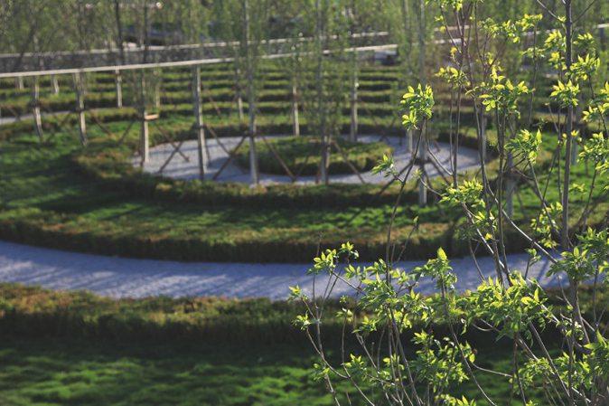 finite-infinite-peter-walker-garden-2013-beijing-expo-22