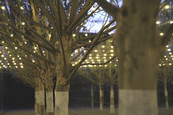 finite-infinite-peter-walker-garden-2013-beijing-expo-27