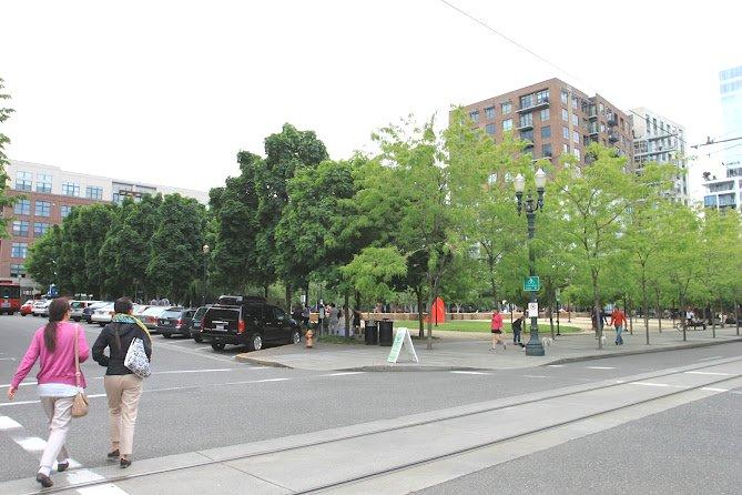 我们从场地的右侧下方(场地右上方是北方)进入,各种大型乔木的树冠给场地提供了遮荫。(Photocredit: 周啸)