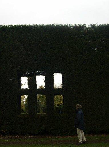 """图4.花园的""""围墙"""""""