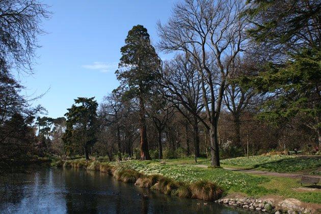 图7.Avon 河流 (Maria E. Ignatieva 摄影)