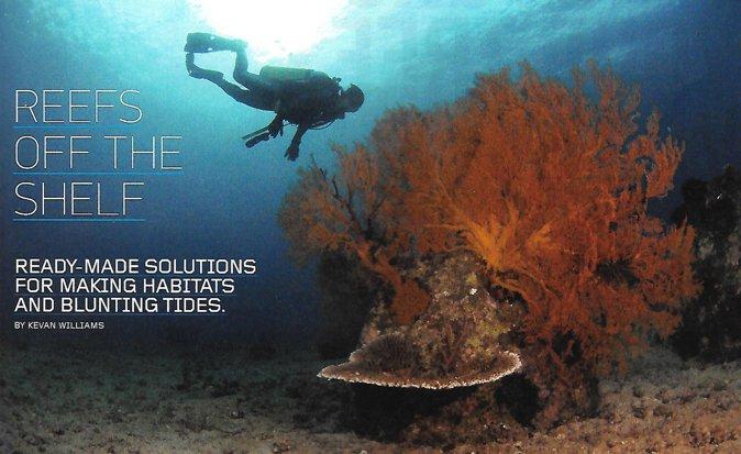 reefs-off-the-shelf-01