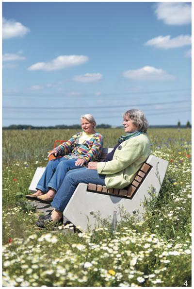 图4 设计在草丛中的隔离性场地里的座椅,与外界通过栈道连接