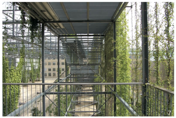 """图7 这个可进入的钢铁构架是一个""""绿色大厅"""",展示了原有机械厂的车间形态"""
