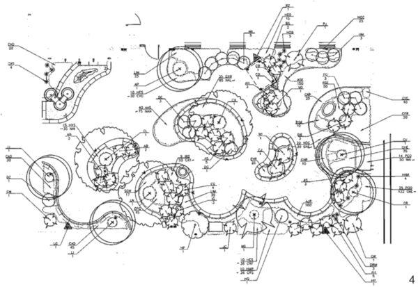 手绘植物种植设计图
