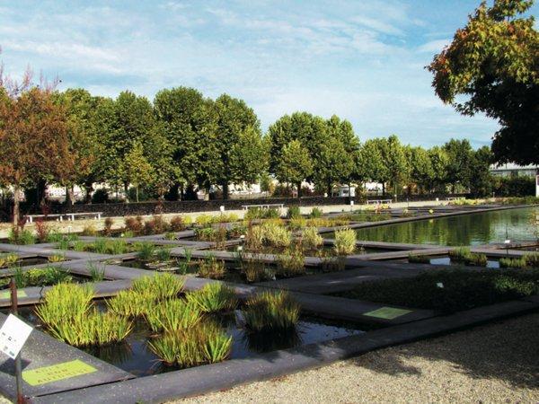 Youthla for Female landscape architects