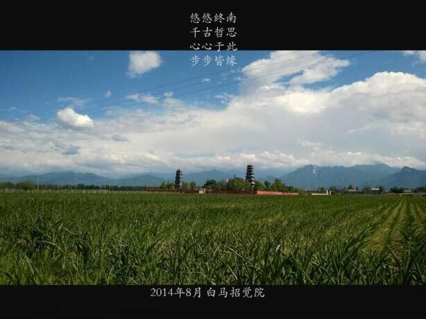 麦田中的招觉院,刘晖老师应景与情而写的小诗