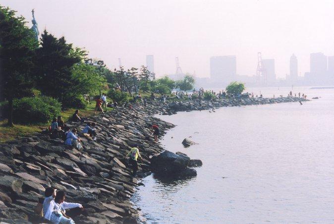 人工的海滨沙滩环境适合贝类和小型鱼类生息。