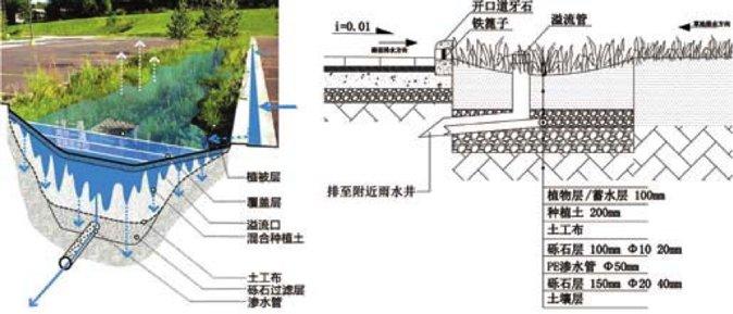 图3 停车场生态沟示意图-海绵城市理论与技术发展沿革及构建途径