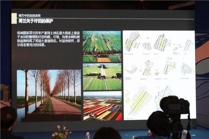 landscape-architecture-and-green-urbanization-40