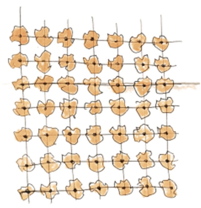 image 2:单一结构的种植方式 source:Hajo Mader