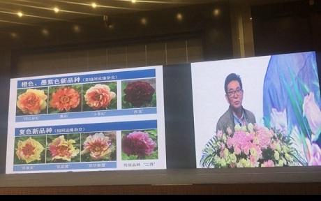中国风景园林学会2018年会——新时代的风景园林主旨报告(二)