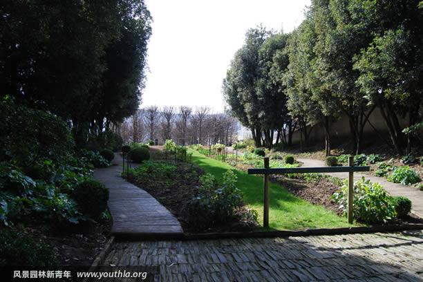图33 绿色园依靠植物叶色和质感体现色彩主题