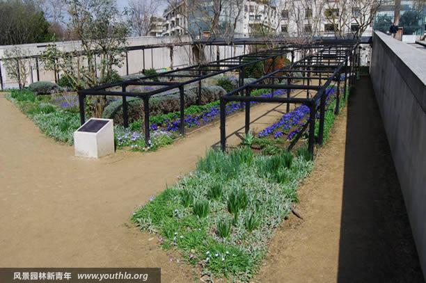 图34 蓝色园以草本花卉表现色彩主题