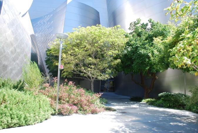 新青年讀老經典之迪士尼音樂廳花園 | 風景園林新青年